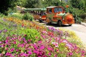 botanical garden jerusalem