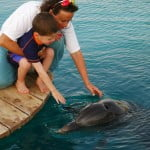 Dolphin Therapy Helps Mute Israeli Teen Speak Again