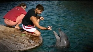 dolphin dock 300x168 Dolphin Therapy Helps Mute Israeli Teen Speak Again