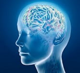 Brain - Technology News - Israel