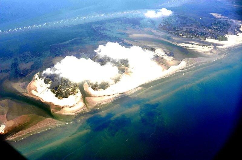 Oil spill - Environment News - Israel