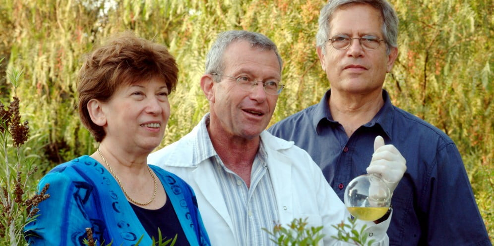 BGU scientists - Health News - Israel