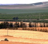 Environment News: The Israeli Farmer That Changed Irrigation