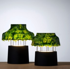 Environment News: Israeli Designed Seaweed Lamps Give Out A Cool Light