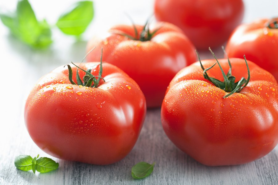 Environment News - Agro Shelef: Using Vegetables To Protect Vegetables