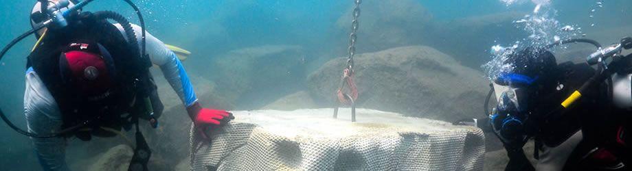 An underwater concrete habitat