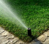 Environment News: GreenIQ Will Save You Half Of The Water You Use In Your Garden