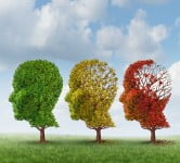 Health News: Israeli Researchers Stop The Brain From Aging To Prevent Alzheimer's