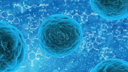 Health News: Five Israeli Companies Using Stem Cell Research To Change The Face Of Medicine