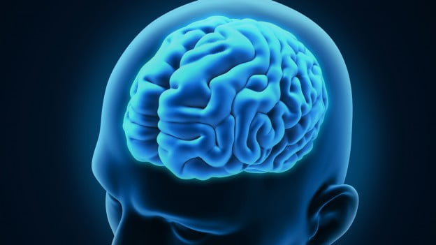 Health News: Israeli Researcher Makes Important Discovery In The Fight Against Brain Cancer