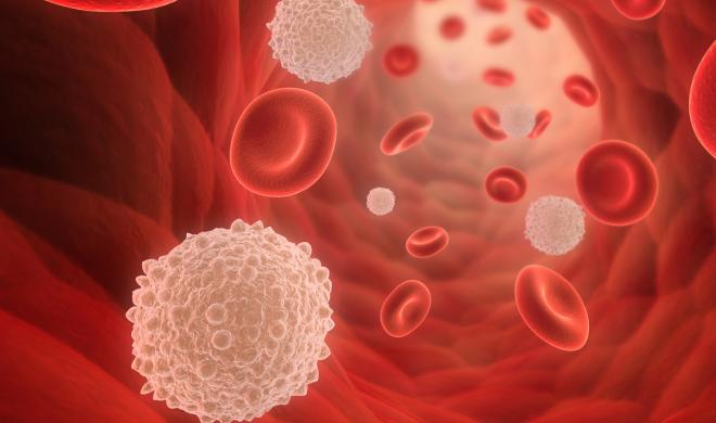 White Blood Cells via MilitaryHealth/Flickr