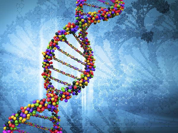 Genome via WikiCommons