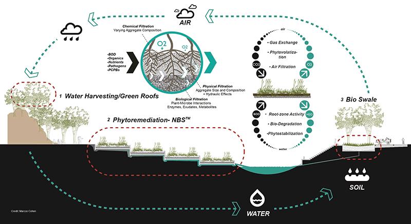 ayala infographic