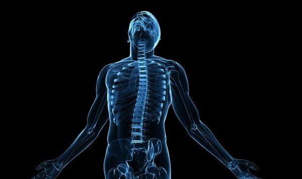 Body Graphic,  Zebra Medical. Courtesy