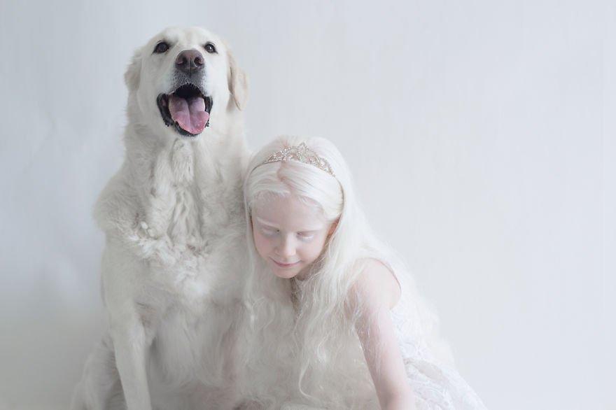 Albino Dog