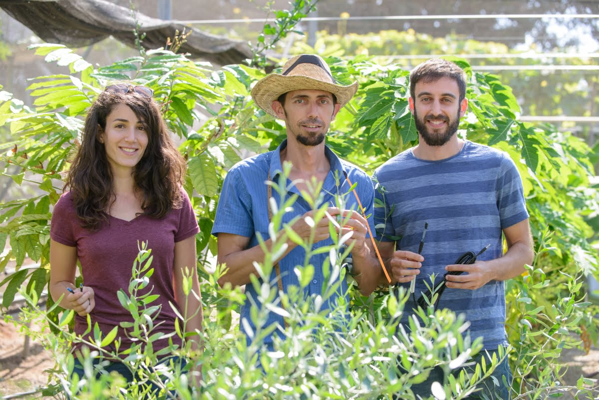 Dr. Tamir Klein (center) with members of the Weizmann Tree Lab. Courtesy
