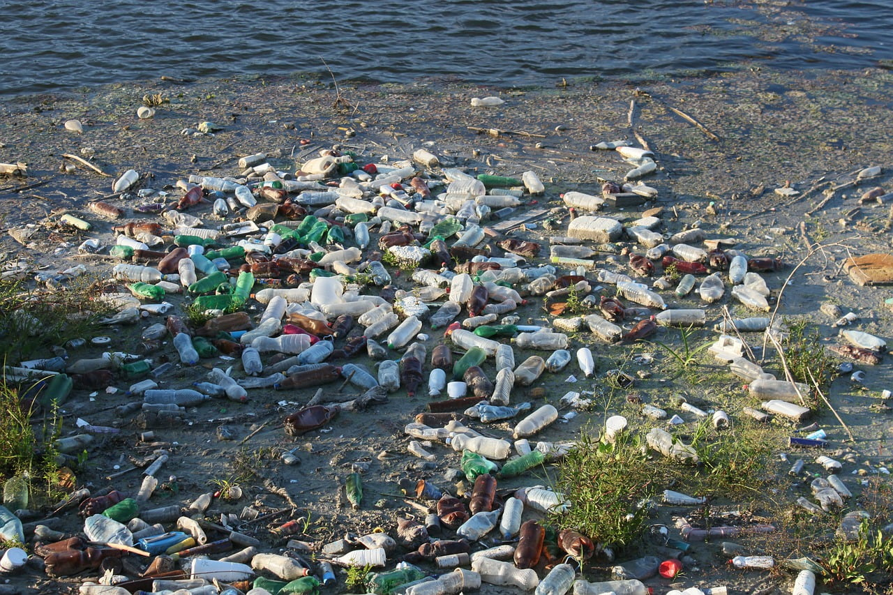 plastic bottles, pollution