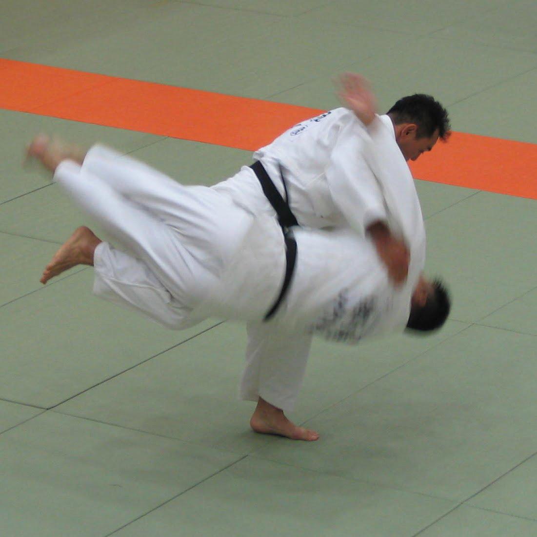men's judo