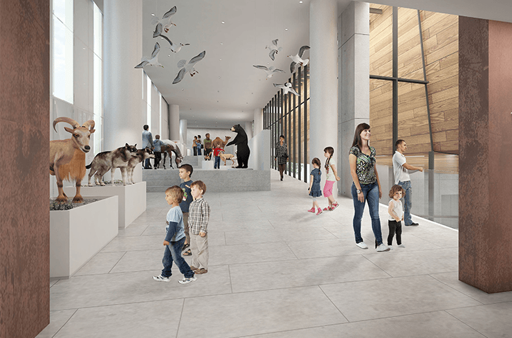 The museum will house and preserve a collection of over 5 million specimens. Courtesy of Kimmel EshkolotArchitects