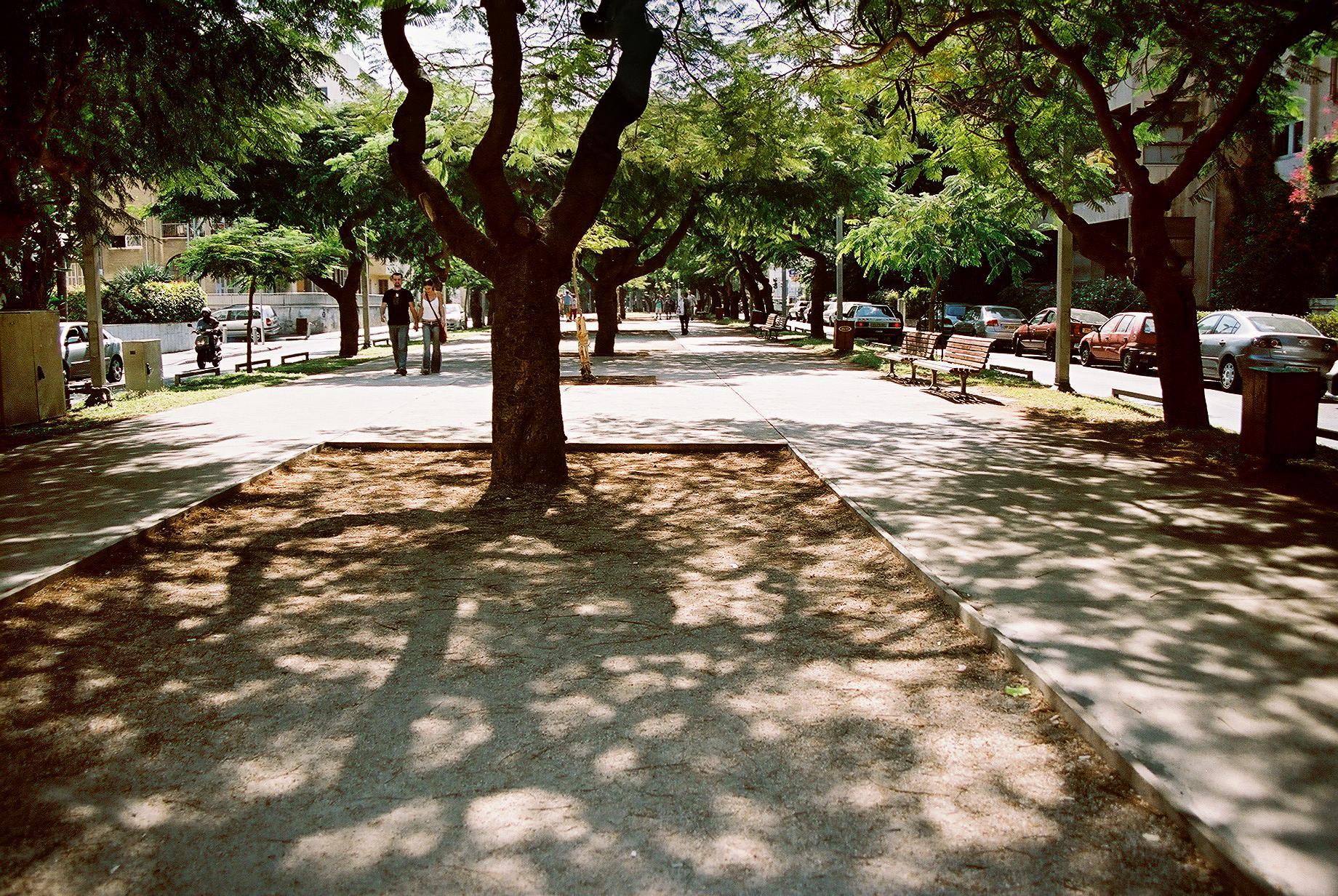 Rothchild Boulevard, Tel Aviv Israel
