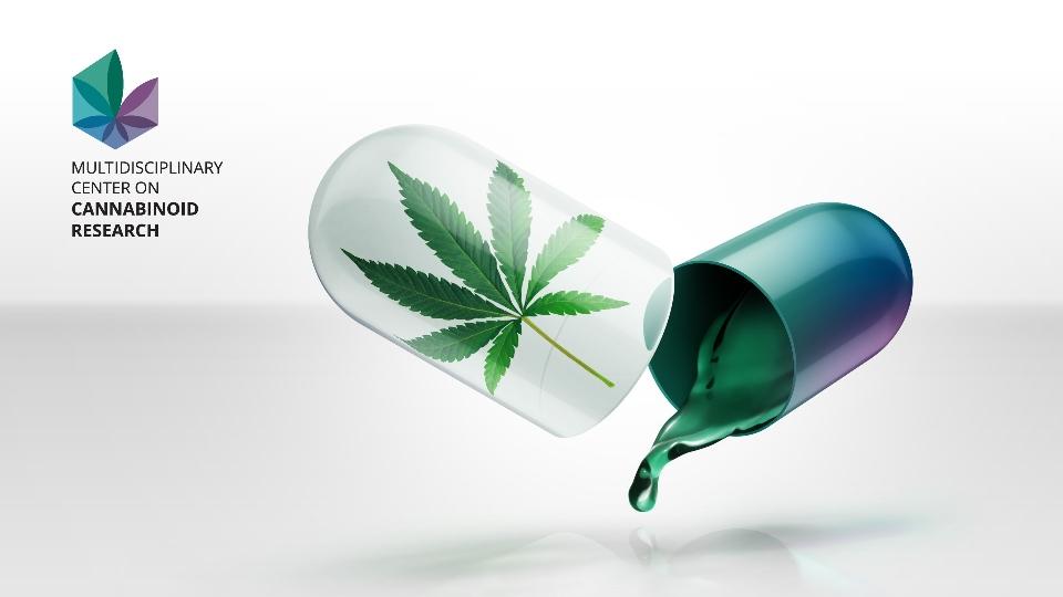 Medical Cannabis Awareness New Zealand - m.facebook.com