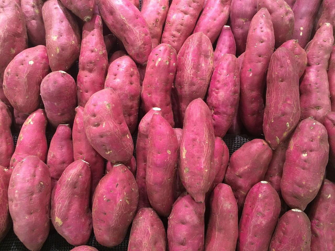 Sweet Potato.Photo by Mike Beauregard/Flickr