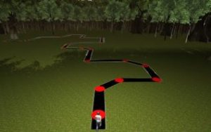 The subject's avatar is seen standing at the beginning of the 3D virtual path.  Courtesy