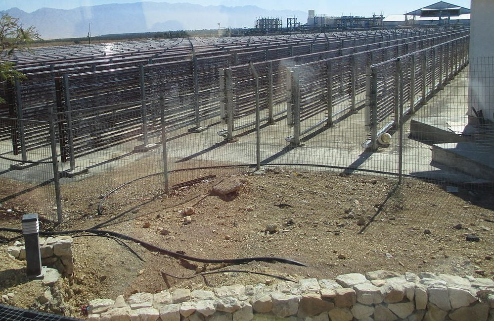Algae production at Kibbuz Ketura. Photo via Dr. Avishai Teicher Pikiwiki Israel