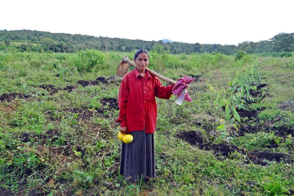 An illustrative photo of a woman on a farm in India. Photo via Pixabay