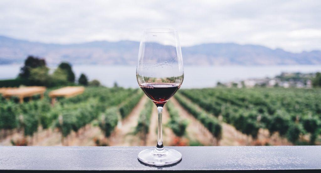 A glass of wine. Photo by Kym Ellis on Unsplash