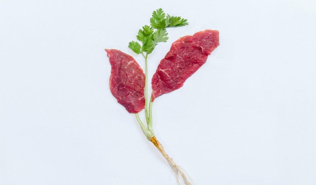 Aleph Farms beefs up clean meat. Photo by PRNewsfoto/Aleph Farms Ltd.