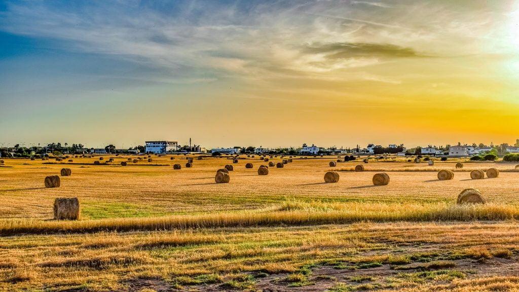 A farm field. Pixabay