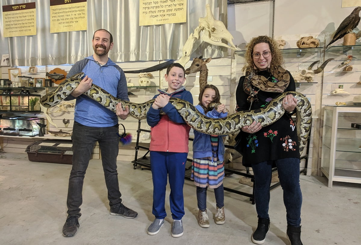 A family holding a snake. Courtesy of The Biblical Museum of Natural History