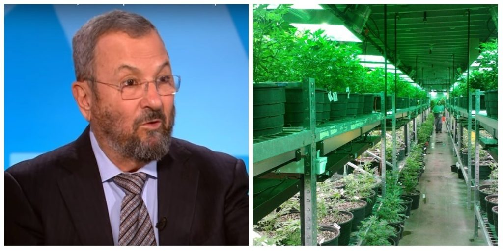 This collage shows a screenshot of former PM Ehud Barak on the left (PBS Newshour on YouTube); and an illustrative photo of a cannabis farm (Pixabay)