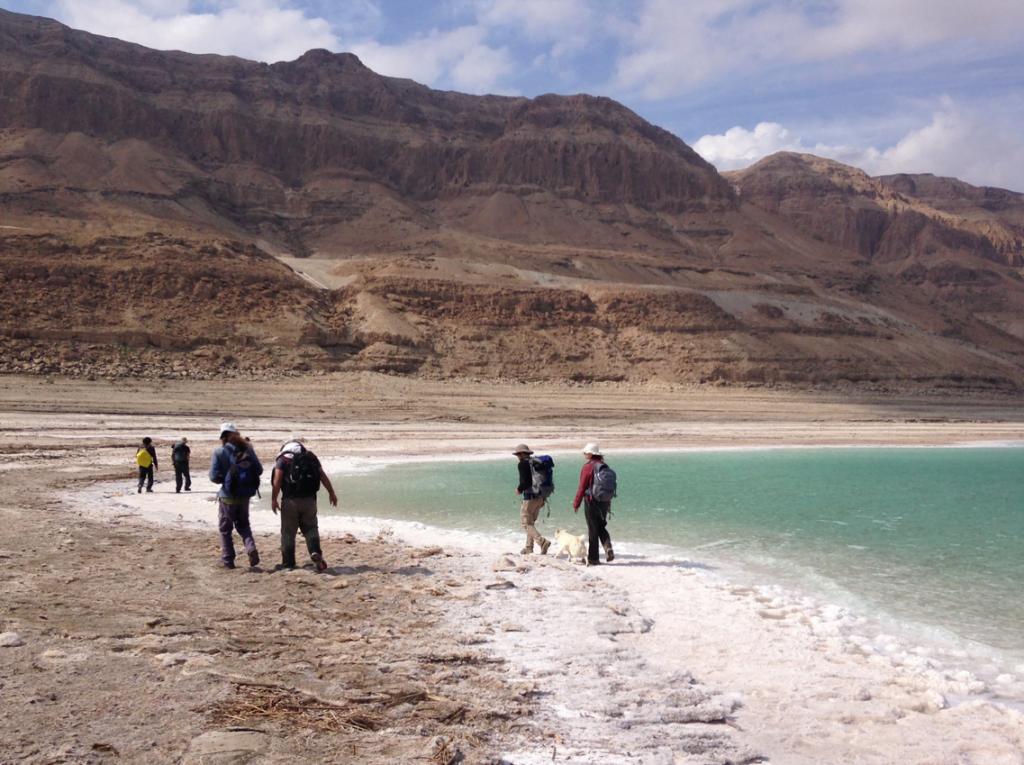 Researchers walk along the bank of the Dead Sea. Credit: Nadav Lensky/Geological Survey of Israel.