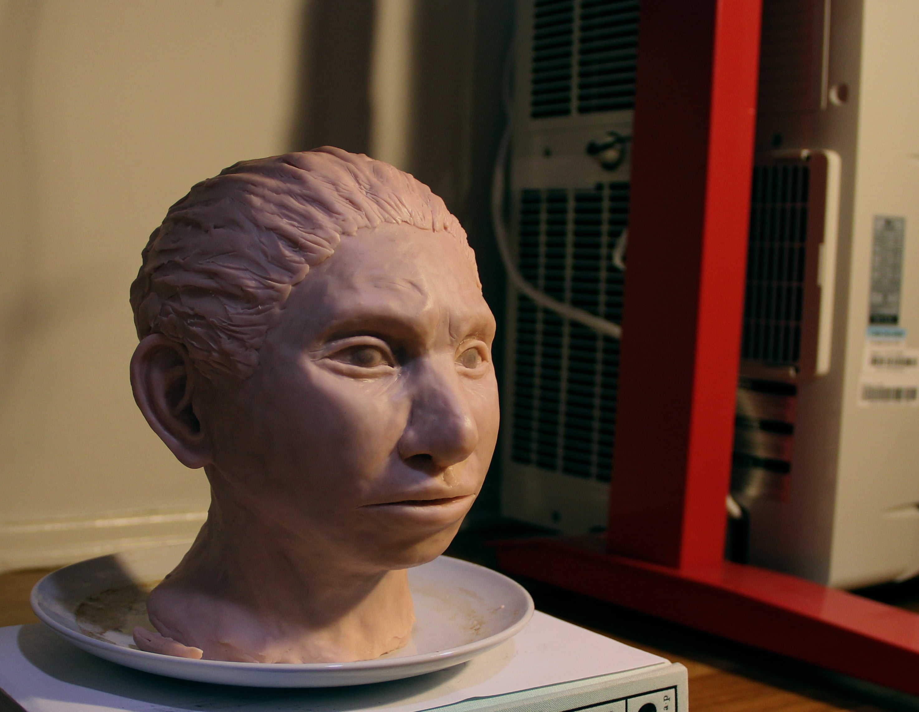 Israeli Facial Reconstruction Of Ancient Human Up For 'Breakthrough Of The Year' Science Award