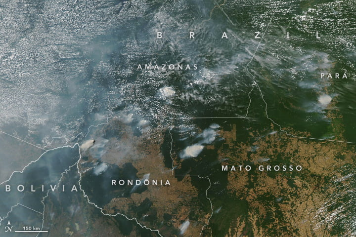 Amazon rainforest fires from space. NASA Earth Observatory images by Lauren Dauphin, using MODIS data from NASA EOSDIS/LANCE and GIBS/Worldview and VIIRS data from NASA EOSDIS/LANCE and GIBS/Worldview, and the Suomi National Polar-orbiting Partnership