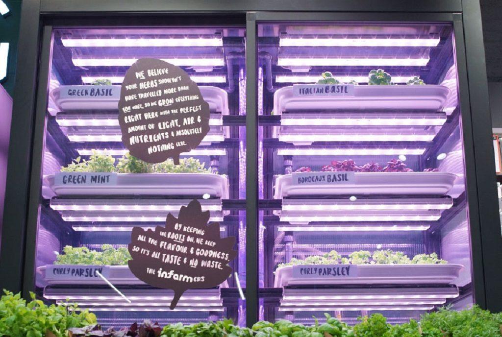 Infarm's urban farming system at M&S. Photo: Samuel Cane / Marks & Spencer