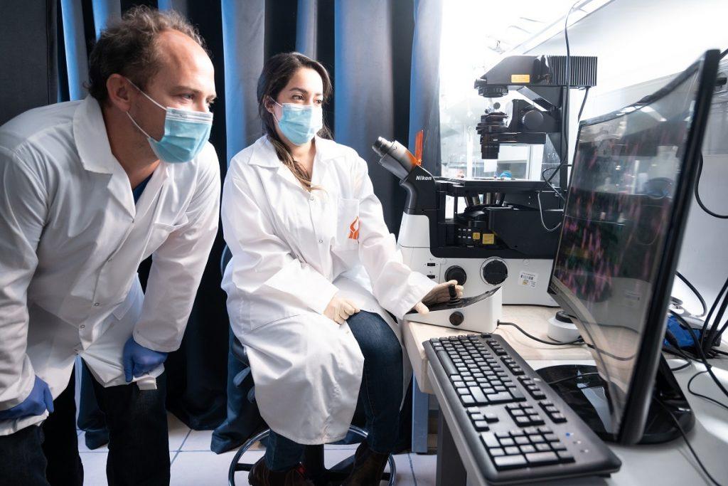 bgu researchers
